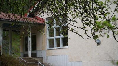 en skola skymtar bakom ett grönt lövträd