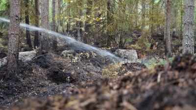 Vatten som träffar bränd mark
