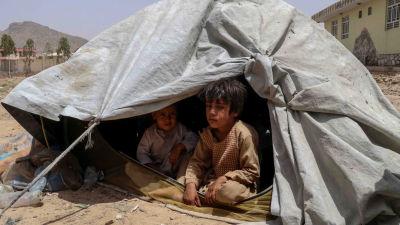 Familjer som flytt från ställen där det pågår strider mellan regeringsstyrkor och talibaner bor i temporära härbärgen i Kandahar.  4.8.2021