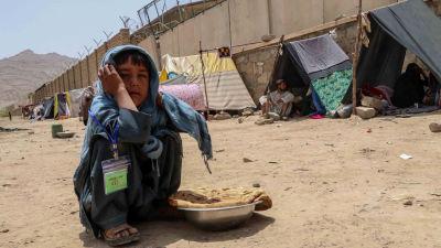 Tält för flyktingar i Kandahar 4.8.2021