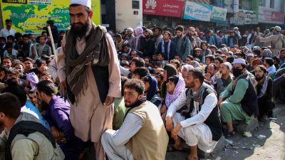Hundratals afghaner köar till en bank i hopp om att få ut pengar.