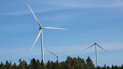 Tre vindkraftverk reser sig ovanför trädtopparna. Ett av kraftverken har tappat ett rotorblad.