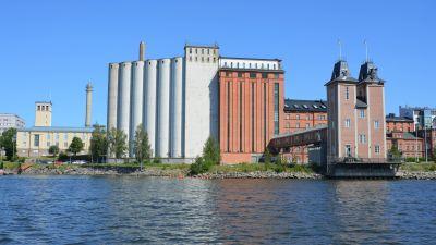 Två stora byggnader vid Vasas strandlinje.