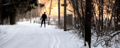Man skidar längs ett spår i en stor park.