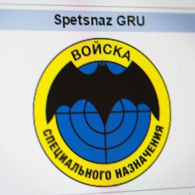 Spetsnaz GRUN:n logo Wikipediassa.