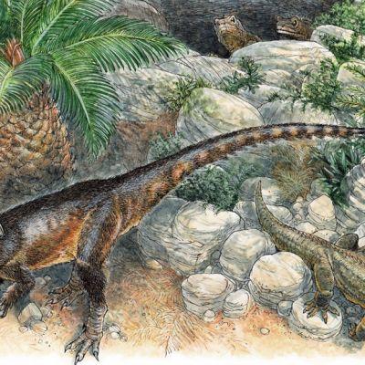 Pitkähäntäinen, takajaloilla kävevä dinosarus kivikossa. Kaksi sisiliskoa muistuttavaa eläintä kurkistelee kiven takaa, kolmas katsoo lentävää hyönteistä.