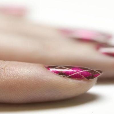 Veren täyttämä hyttynen naisen kädellä.