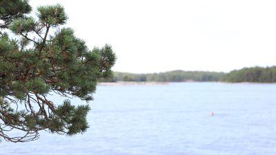 Havet i Kasnäs.