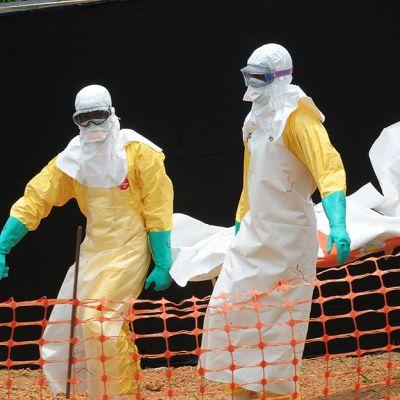lks20140405 ebola guinea.jpg