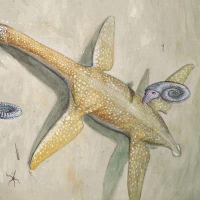 Pitkäkaulainen täplikäs saurus makaa merenpohjassa evämäiset raajat sivuille ojennettuina.