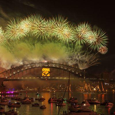 Ilotulitus Sydneyssa vuodenvaihteessa 2013.