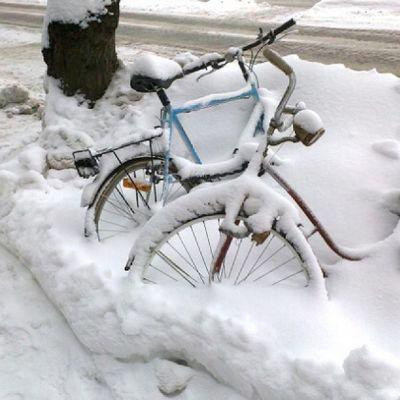 Polkupyörät hangessa.