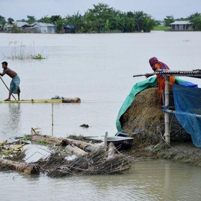 Kuvassa mies meloo tulvavedessä. Nainen on maakaistaleella selin kameraan.