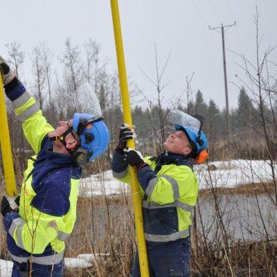 Ravera Oy:n sähköasentajat Daniel Yrjas (vas.) ja Kaj Söderman asentavat linnunpelättimiä 20 kV jännitetyösauvojen avulla.