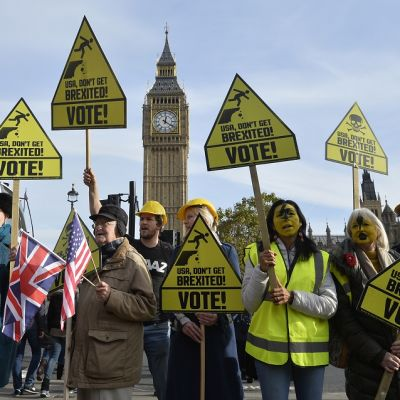 Mielenosoittajia kylttien kanssa, taustalla kellotorni Big Ben.