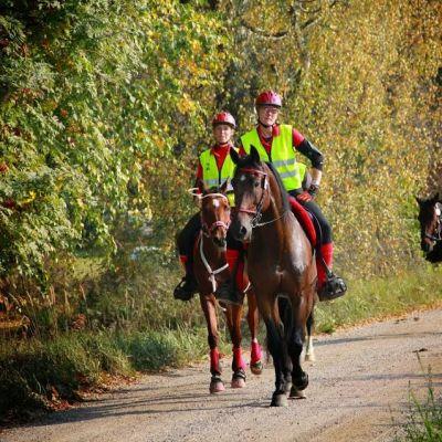 Kuvassa kolme ratsastajaa ja hevosta.