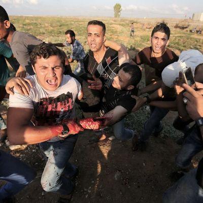 Palestiinalaisnuoret kantavat haavoittunut mielenosoittajaa turvaan Israelin tulitukselta Gazan ja Israelin välisellä rajalla 9. lokakuuta 2015.