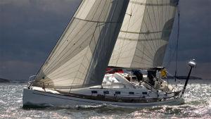 segelbåt i full kryss på en vacker fjärd.