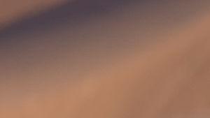 De fyra huvudpersonerna i Sex and the City poserar på en sanddyn i filmen från 2010.