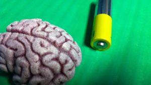 Aivot ovat kehon energiasyöppö