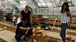 Deltagare i Malakta Dancefilm Lab filmar i ett växthus.