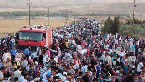Syriska flyktingar överskrider gränsen mot Irak