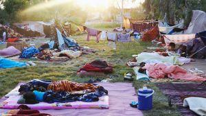 Flyktingläger i Qushtapa Park i Irak