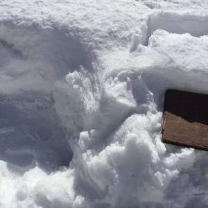 En planka i snö