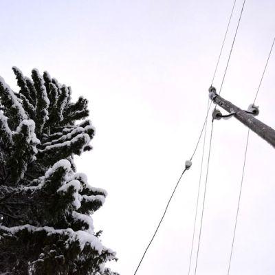 Sähkölinjoja taivasta vasten