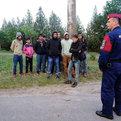 Afganistanilaisia pakolaisia Unkarin ja Serbian rajalla Asotthalomissa 21. toukokuuta.