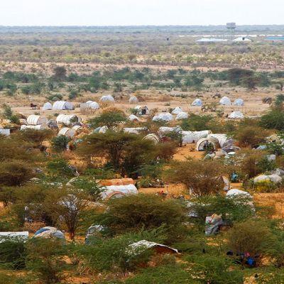 Osa Dadaabin leiriä Kenian koillisosassa.