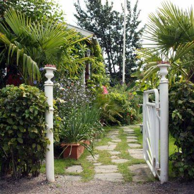 Puutarhan portti ja palmuja Turussa