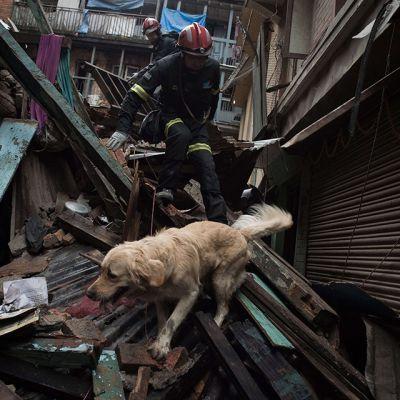 Espanjalaiset pelastustyöntekijät etsivät ihmisiä raunioista Kathmandussa 28. huhtikuuta.
