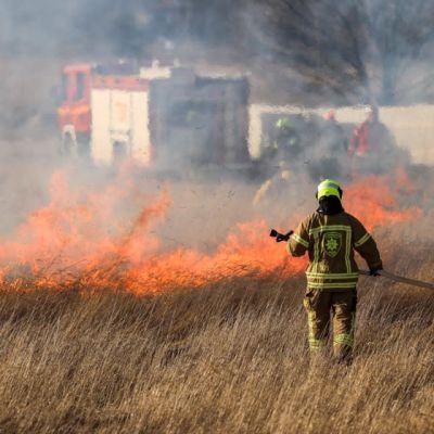 Varsinais-Suomen pelastuslaitos sammuttaa maastopaloa.