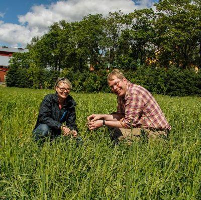 Årets mest miljövänliga gård, jordbrukare Eerola