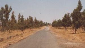 pölyinen maantie jossakin savannilla
