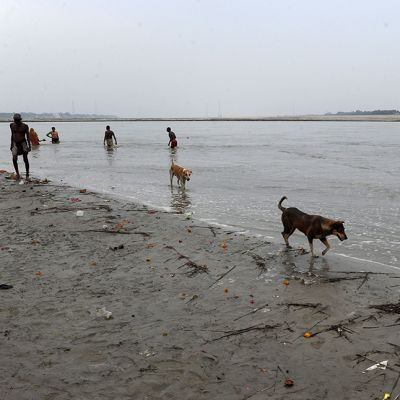 Intialaiset kastautuivat Ganges-jokeen Allahabadissa 10. heinäkuuta 2014.