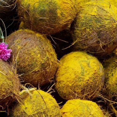 Kasa keltaiseksi värjättyjä kookospähkinöitä, keskellä vaaleanpunainen kukkanen.