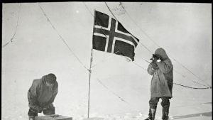 Amundsen Hansen sydpolen 1911