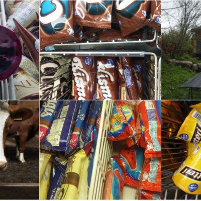 Collage med glassföretagare Robin Nyman, glassmärken och ko
