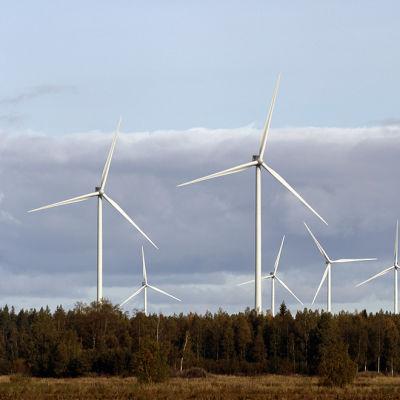 Vindkraftsverk i Kalajoki.