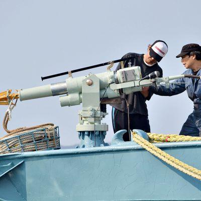 Valaanpyyntialuksen miehistö on tarkistamassa harppuunaa Ayukawan satamassa Ishinomakissa.