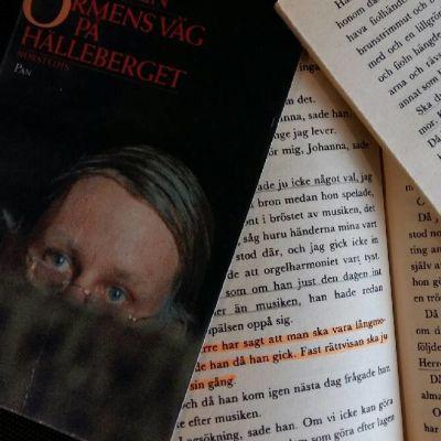Bild av bokpärm och sidor ur Ormens väg på hälleberget.