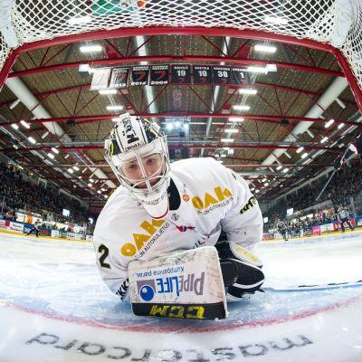 Joel Blomqvist kuvassa