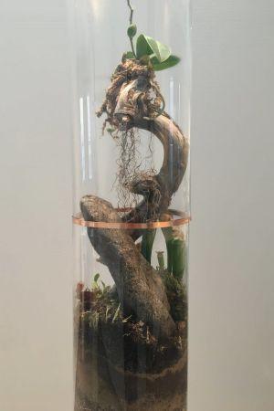 närbild på ett konstverk gjort av trä, mull och glas.