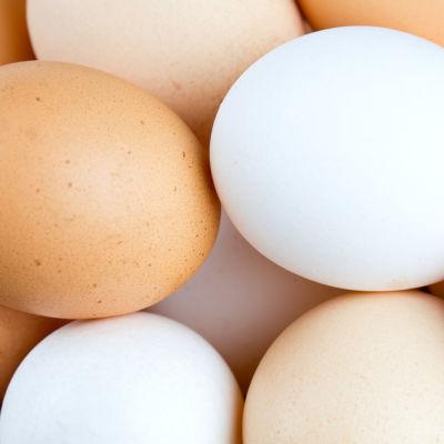 Kananmunia