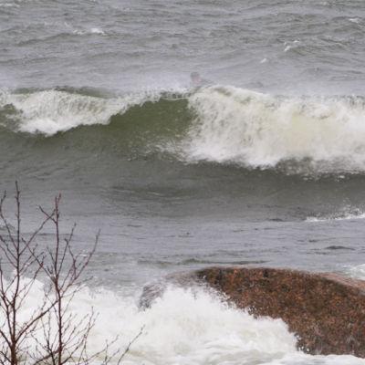 Stora vågor slår mot stora stenar vid stranden. I vågbruset längre ut syns en surfare som ligger på sin surfbräda i våtdräkt.