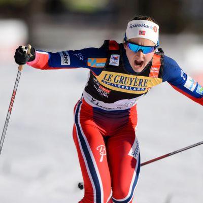 Ingvild Östberg