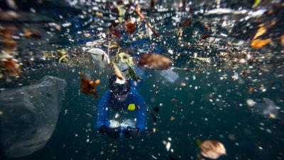 Plastskräp i havet