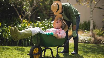 Äldre man kör äldre kvinna i skottkärra, de skrattar och pussas